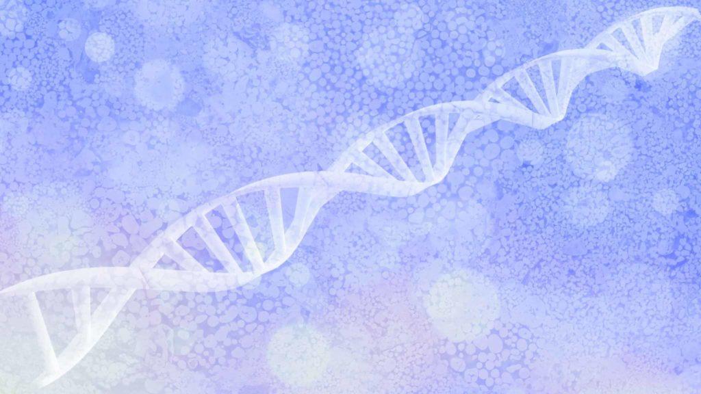 Les gènes parviennent à moduler leur expression.