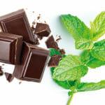 Recette de la glace chocolat menthe