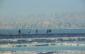 Marathon de la Mer Morte