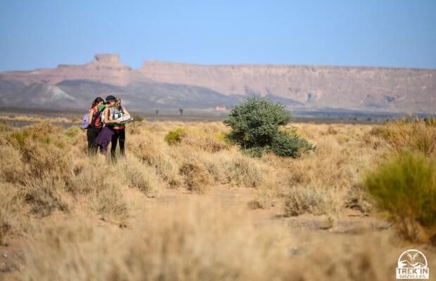 Trek'In Gazelles